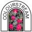 Umelecká inštalácia Colourstream