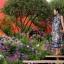 Výstava kvetov RHS Chelsea Flower Show