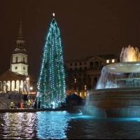 Vianočný program na Trafalgar Square